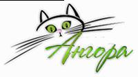 Логотип клиента Ангора отзывы о SEOquick